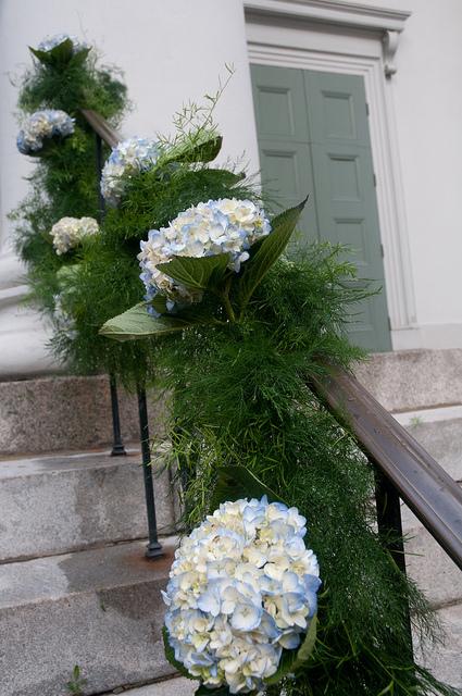Matrimonio ecologico ortensie e rosmarino fairy eco for Ortensie in vaso